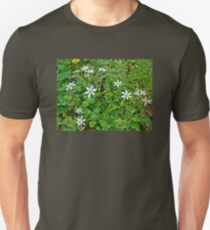 Star Of Bethlehem Wildflowers - Ornithogalum umbellatum - Grass Lily T-Shirt