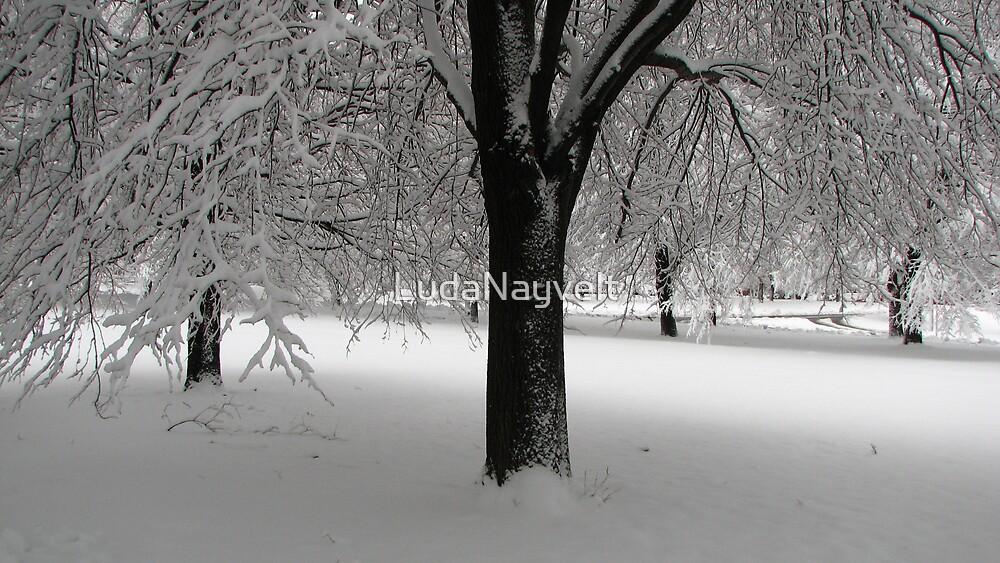 Snow! by LudaNayvelt