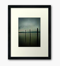 Three Seagulls - Peekskill Riverfront  Framed Print