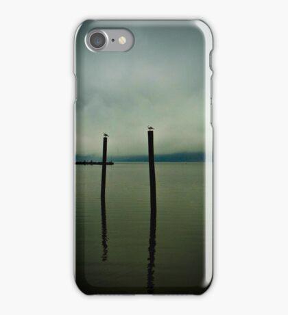 Three Seagulls - Peekskill Riverfront  iPhone Case/Skin