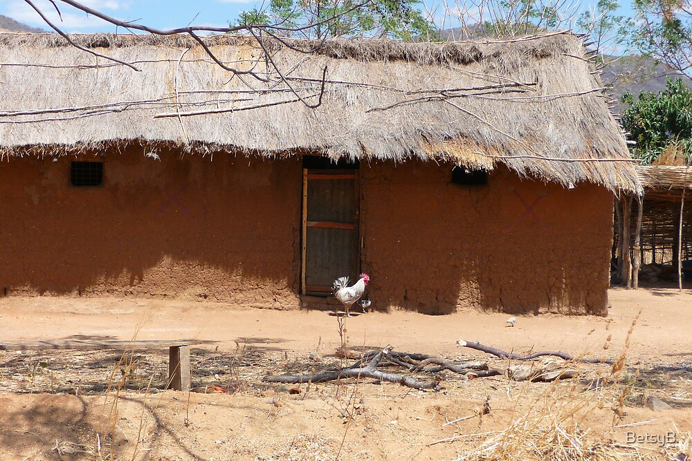 Mud House with Chicken by BetsyB