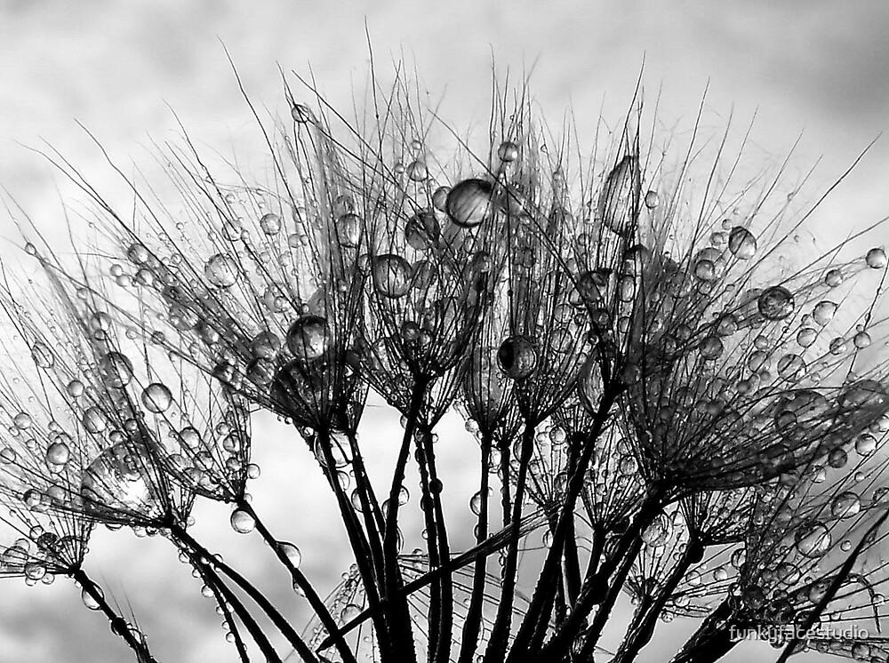 Droplet Fan by funkyfacestudio