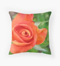 Woburn Abbey Throw Pillow