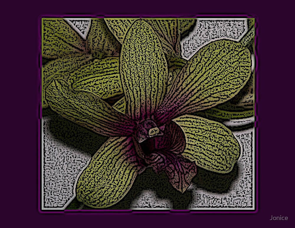 Orchid Flower Engraved Design by Jonice