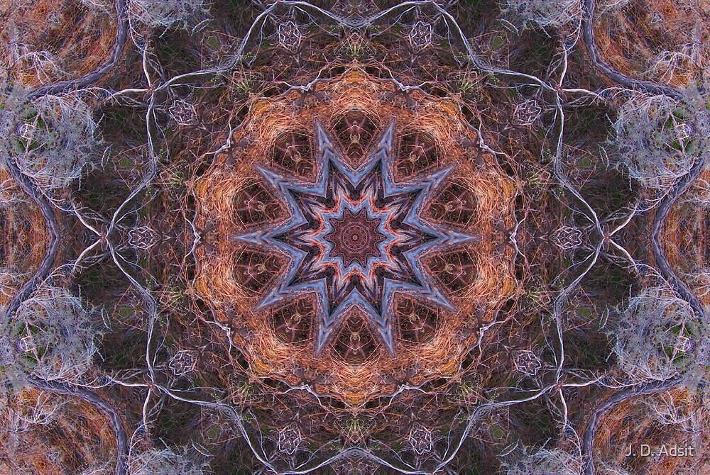 Concentric Sage by J. D. Adsit