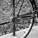 BIKE,WHEEL,TRANSPORTATION,WINTER,COLLEGE by sky2007