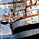 Tall ships 4 by Monica Di Carlo