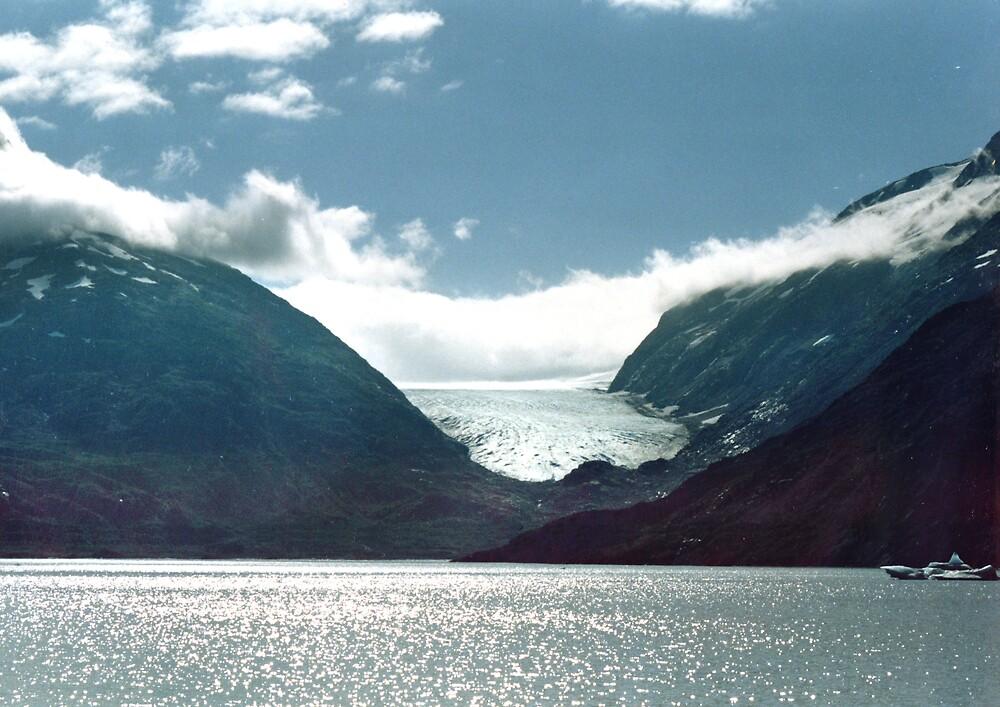 Alaskan Glacier by Dominique Sparks