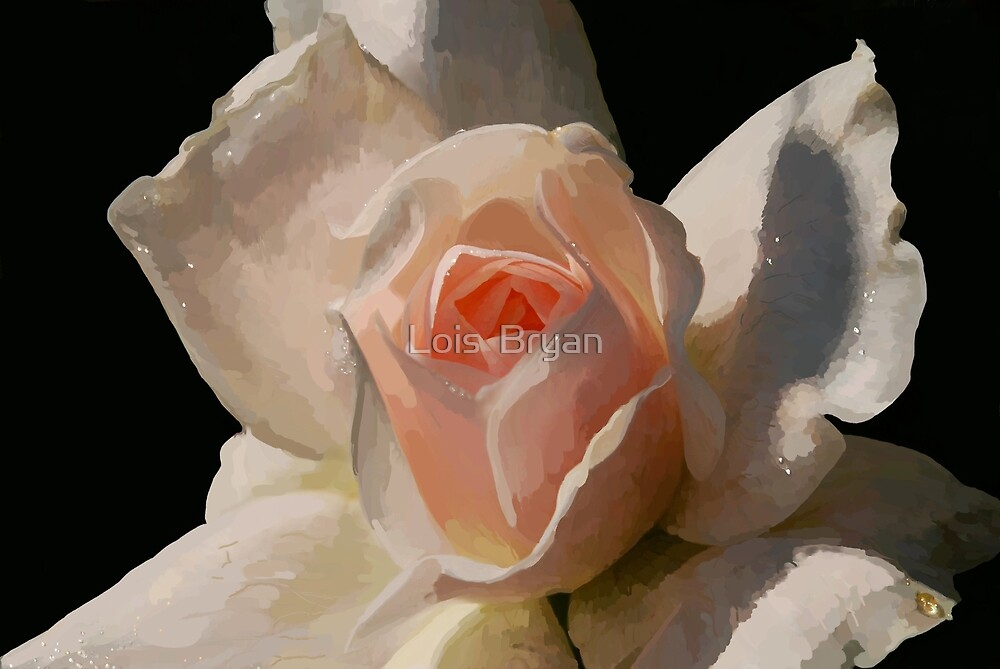 Painted Rose by Lois  Bryan