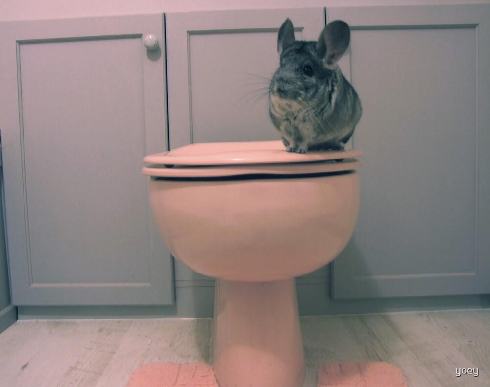 Toilet training by yoey