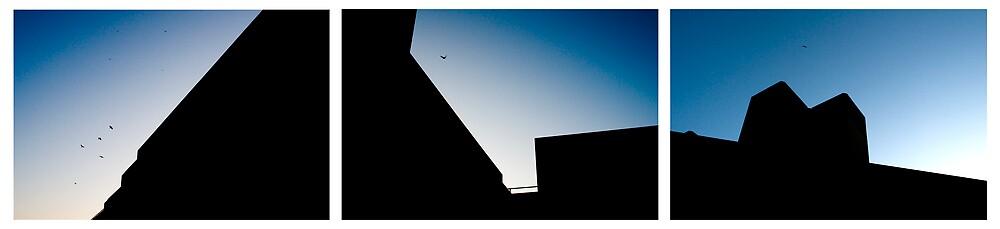 Birds One by Rick Symonds