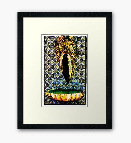 fuente de Dioses Framed Print