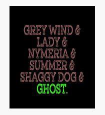 Grey Wind & Lady & Nymeria & Summer & Shaggy Dog & Ghost Photographic Print