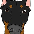 Black and Tan Doberman  by rmcbuckeye