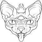 Libitina Sphynx Katze von nyosuke