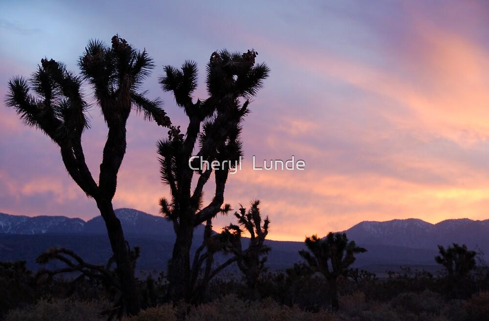 Desert Silhouette by Cheryl  Lunde