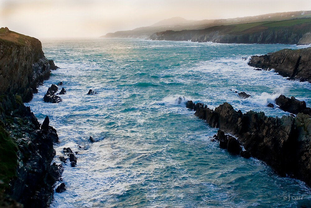 Gale force wind by e j carr