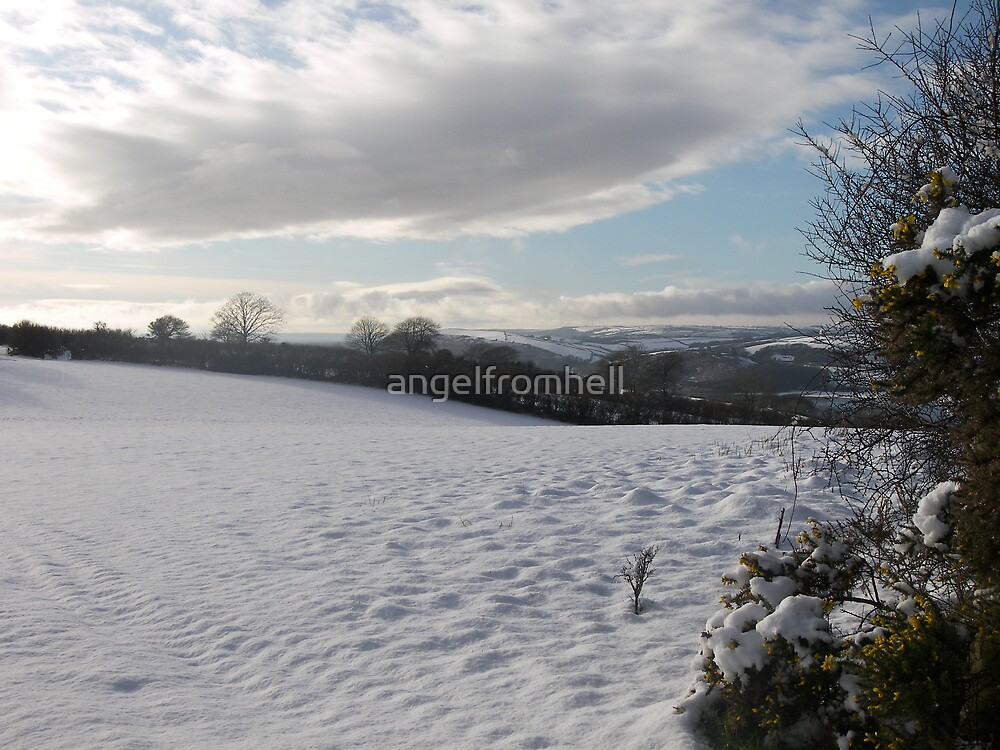 view from Porthill, Ferryside by angelfromhell