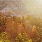 Sunrise at Bryce Canyon National Park by Karin Elizabeth