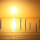 Sunrise with Poles by Jo Nijenhuis