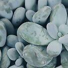 Moonstones by Karin Elizabeth