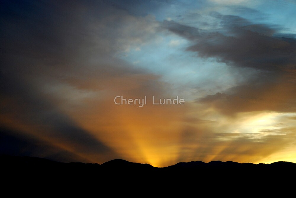 Sunburst by Cheryl  Lunde
