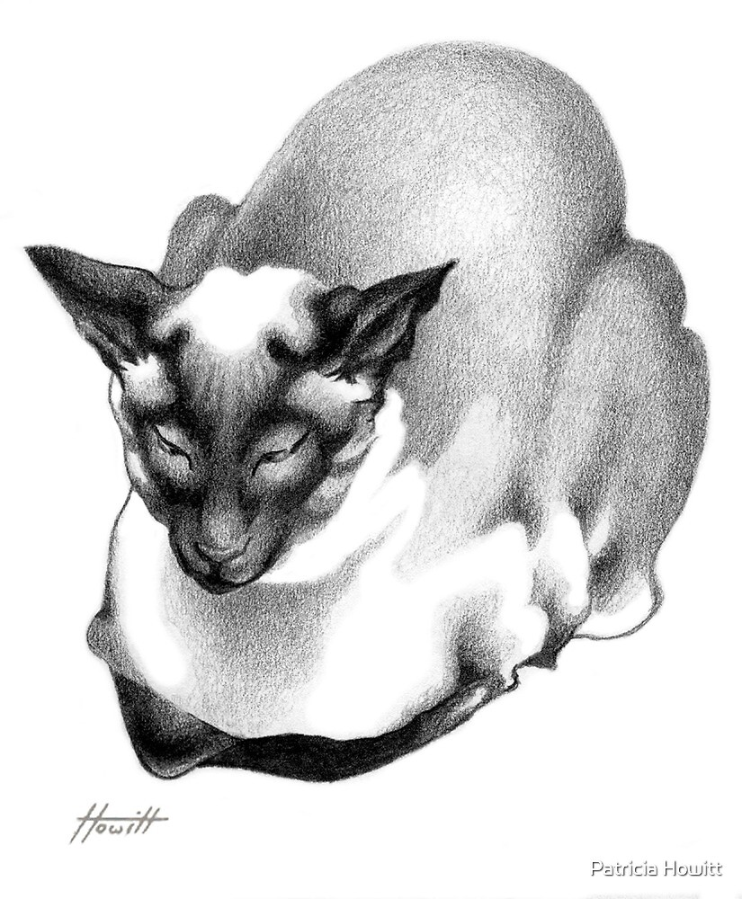 Siamese Champion by Patricia Howitt