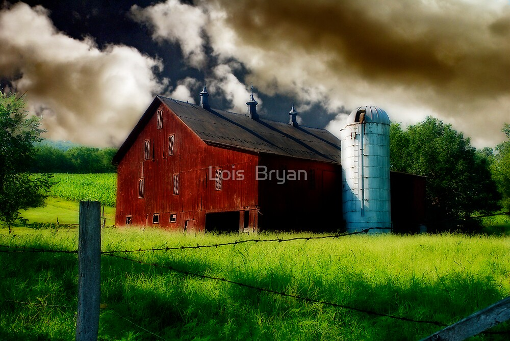 Summer Storm by Lois  Bryan