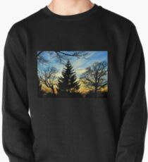 Silhouetted trees at sunset! Pullover