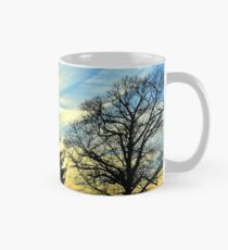 Silhouetted trees at sunset! Mug