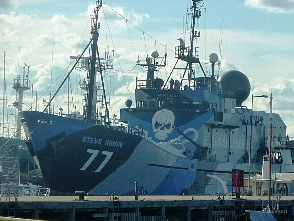 *Steve Irwin* - Anti Whaling Ship - Williamstown Vic. by EdsMum