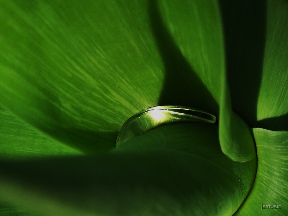 Raindrop in a Yucca by jsmusic