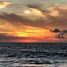 Sunset: Pacific Ocean by Elizabeth  Lilja