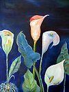 Arum lilies / Varkore by Elizabeth Kendall