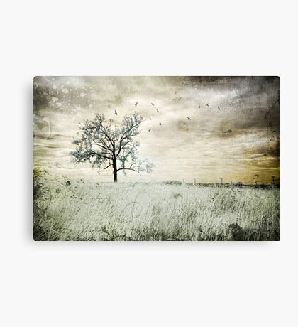 Up On The Hill Canvas Print