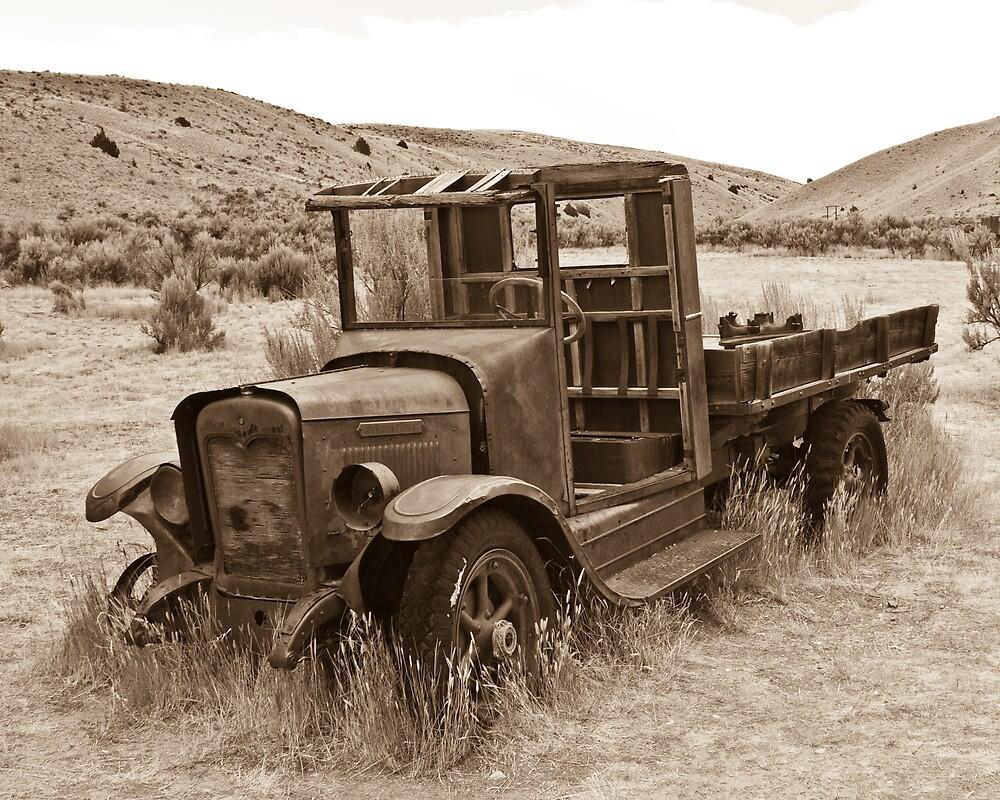 International Harvester Pickup - Bannack, MT by Tim Leonhardt