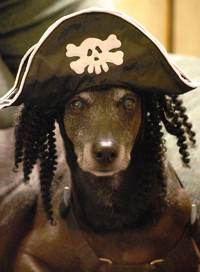 Yo Ho Yo Ho... A Pirate's Life For Me....  by Angela Lance