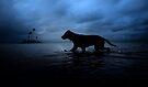 Moonlight Splash by Isabella by Alex Preiss