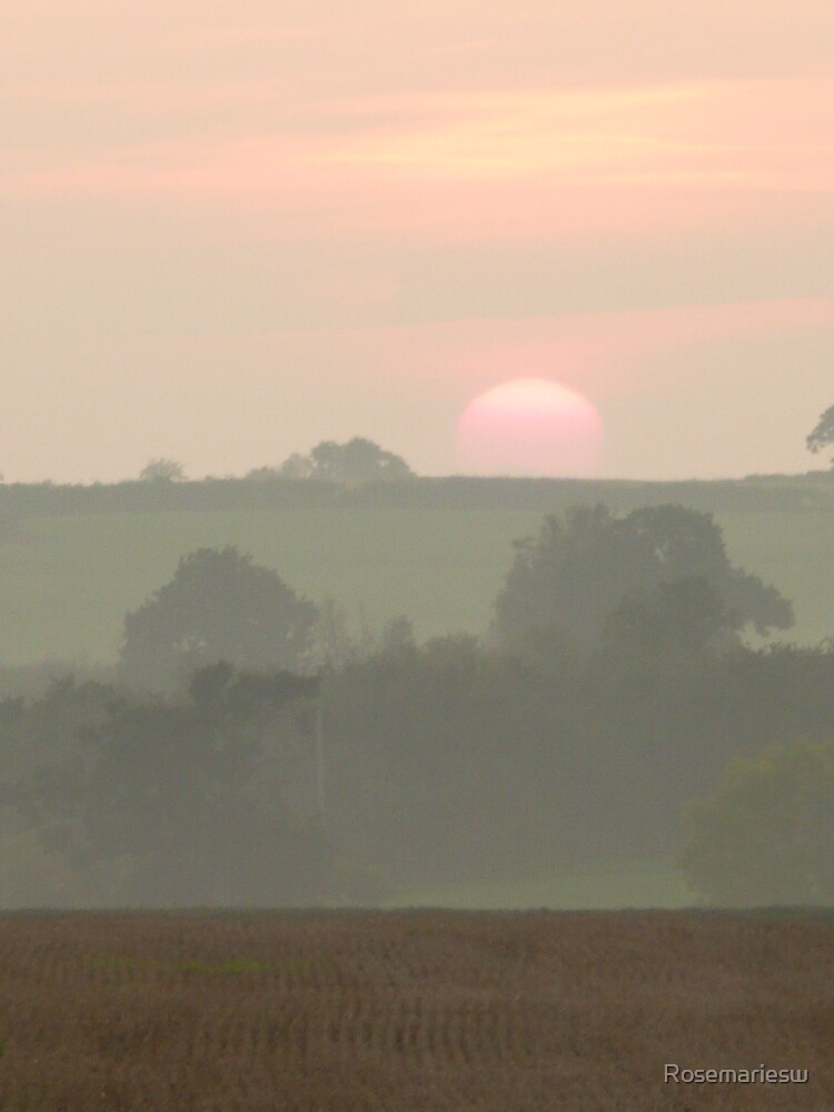 Misty Pink sunset  by Rosemariesw