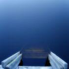 What lies beneath ? by Greg Hamilton