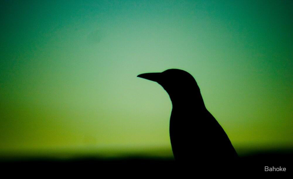 Silhouette by Bahoke
