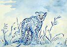 Jagluiperd / jaguar by Elizabeth Kendall