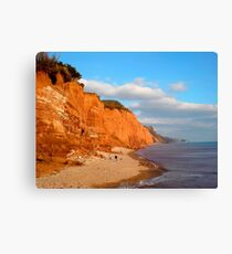 The Red Cliffs of Sidmouth Canvas Print