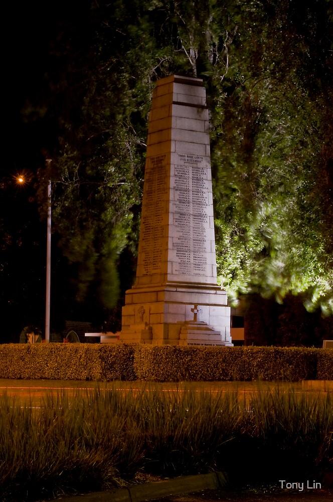 Williamstown War Memorial at Night by Tony Lin