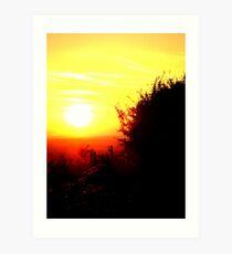sunlit life Art Print