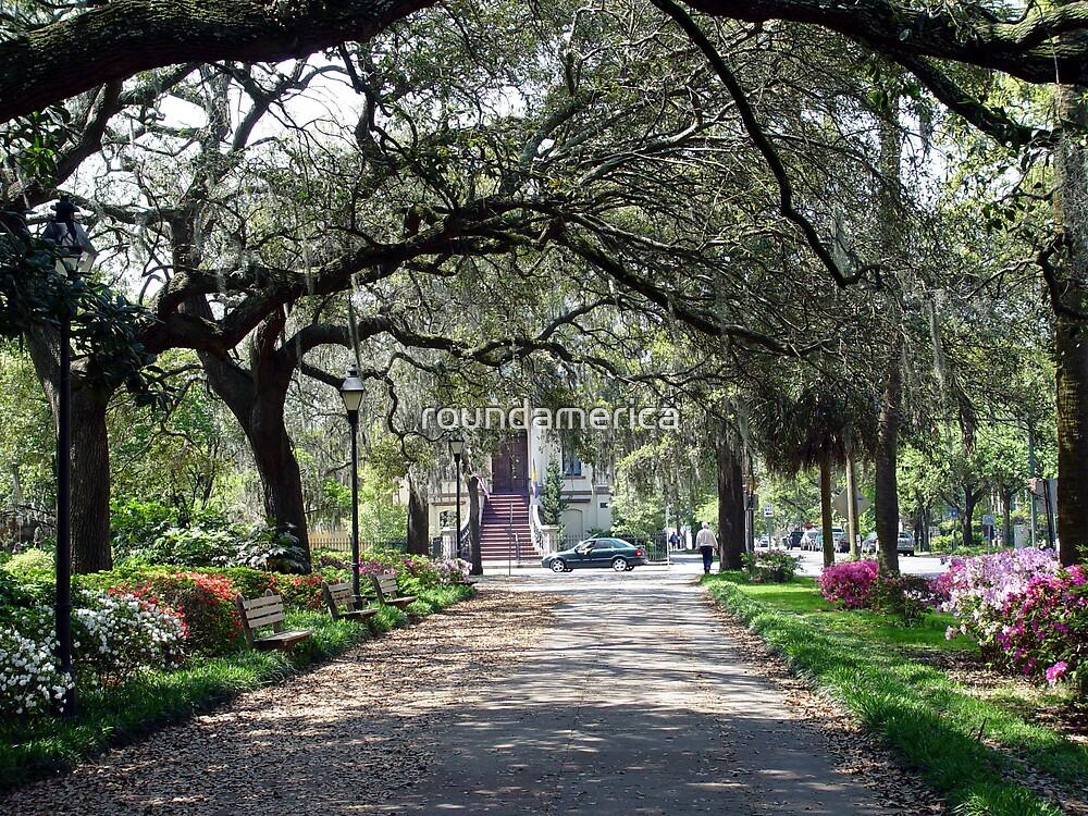 Typical tree-lined walk in Savannah, Georgia by roundamerica