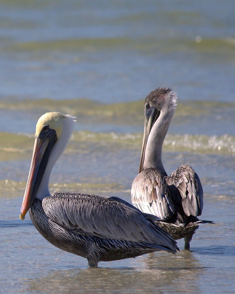 Two On The Beach by Karen  Moore