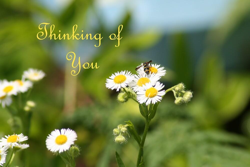 Thinking of You by CardLady