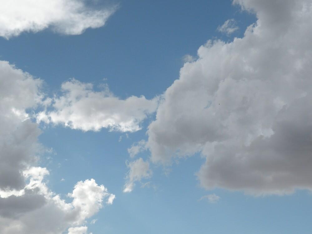 cloud wonder by Bonnie Pelton
