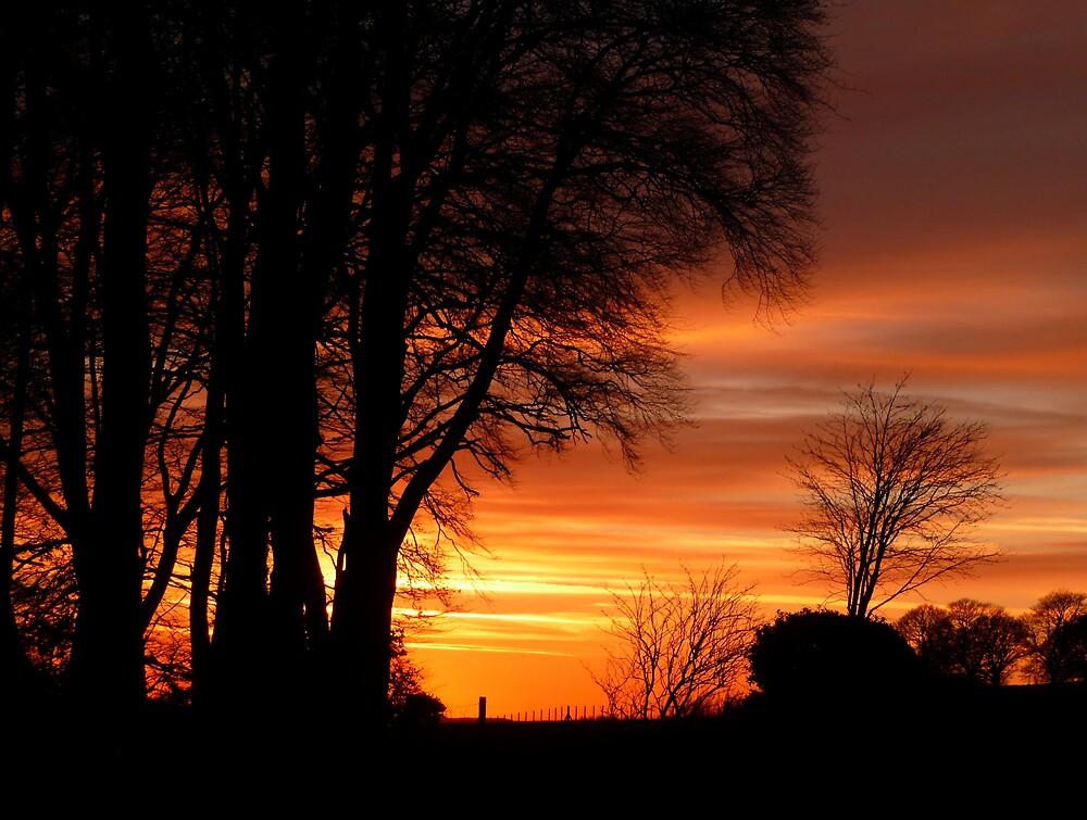 Sunset  Silhouettes by Braedene
